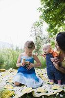Activités à faire avec les tout-petits pour leur enseigner les oiseaux