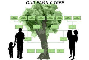Comment faire un graphique arbre généalogique en ligne