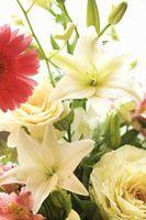 Comment faire un faux demoiselle d'honneur Bouquet