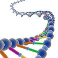 Pourquoi est le sodium utilisés dans l'extraction de l'ADN?