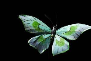 Toppers gâteau de mariage uniques avec des papillons