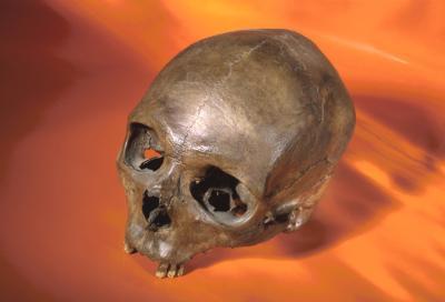 Caractéristiques anatomiques des humains modernes