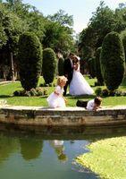 Comment décorer un mariage en bord de piscine