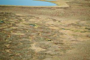 Quelle est la moyenne des précipitations pour un Tundra climatique?