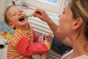 Comment dois-je conserver les dents de bébé de ma fille pour les cellules souches?