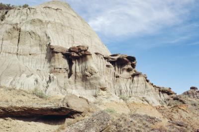 Ce qui détermine le type de fossile qui est formé?