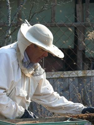 apiculture Aide
