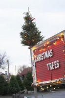 Arbre de Noël Faits et Trivia