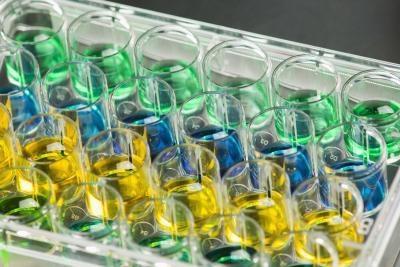 Ways pour les particules à entrer dans une cellule