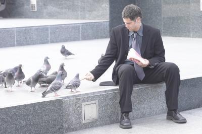 Méthodes facile à apprivoiser Pigeons