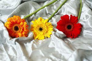 DIY soie bouquet de mariée