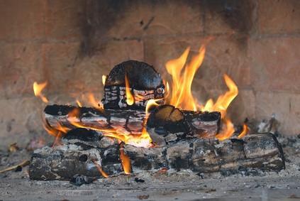 Pourquoi combustion du bois et la combustion de combustibles fossiles ne produit polluants similaires?