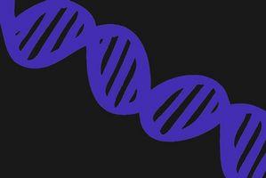 Comment puis-je trouver des parents de naissance à données génétiques Banks?