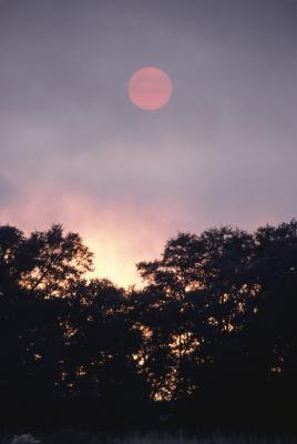 Pourquoi la Lune reflète-t-Rouge Parfois?