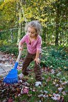 Quels sont les bons ensembles d'outils pour les enfants?