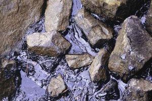 Les effets de la pollution par les hydrocarbures sur les écosystèmes aquatiques