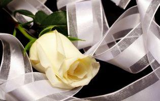 Comment faire une mariée Bow Bouquet