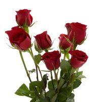 Idées Valentine Bouquet