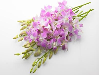 Comment envoyer des fleurs à Taiwan