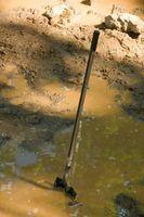 Projets scientifiques sur le sol Inondé