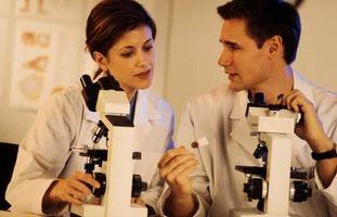 Comment Désinfecter Microscope Slides