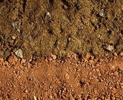 Projet scientifique sur Porosité du sol