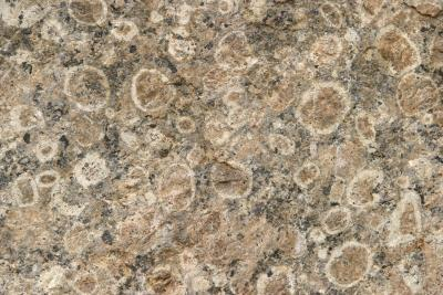La différence entre des minéraux et des roches en géologie