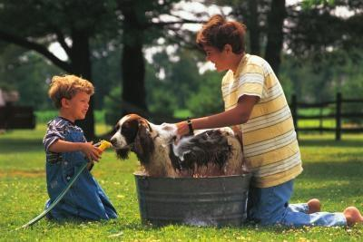 Comment le fait d'avoir un chien sur les enfants?