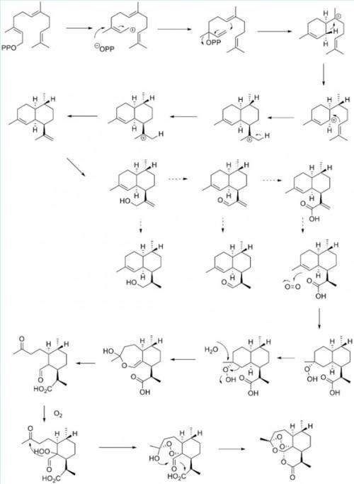 Quelle est la structure chimique de l'artémisinine?