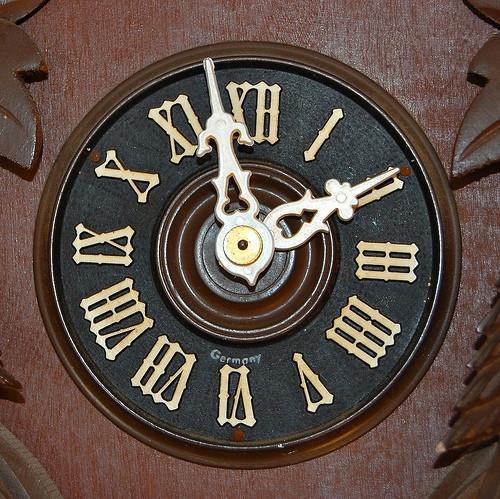 Cuckoo Clock Instructions