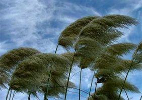 Comment la vitesse du vent est liée à gradient de pression?