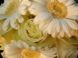 Comment faire de la soie Bouquets de mariée Avec Gerbera Daisies