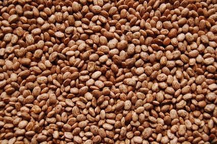 Instructions sur Comment faire Bean Bags