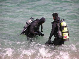 Comment rencontrer Scuba Diving Amis