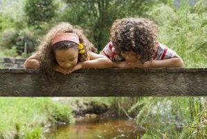 Livres pour enfants sur les habitats