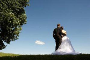 Quelles sont les exigences pour se marier dans le comté de Lucas, Ohio?